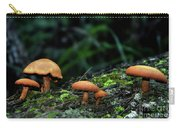 Toadstool Village Carry-all Pouch by Kaye Menner