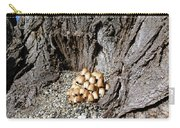 Toadstools In The Gravel Carry-all Pouch by Will Borden