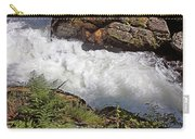 Tongass National Forest Carry-all Pouch