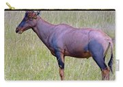 Topi Antelope Carry-all Pouch