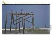 Topsail Ocean City Pelicans Carry-all Pouch
