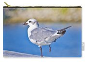 Topsail Seagull Carry-all Pouch by Betsy Knapp