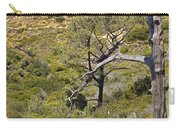 Torry Pines Sentinal Carry-all Pouch