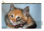 Tortoiseshell Kitten Carry-all Pouch
