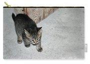 Tough Barn Kitten Carry-all Pouch