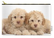 Toy Labradoodle Puppies Carry-all Pouch