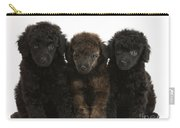 Toy Poodle Pups Carry-all Pouch