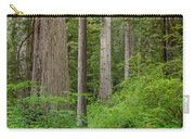 Trail Through Redwoods Carry-all Pouch