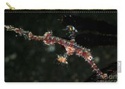 Transparent White And Red Harlequin Carry-all Pouch