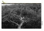 Tree Dancer Carry-all Pouch