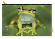 Tree Frog Hyla Rubracyla At Night Carry-all Pouch