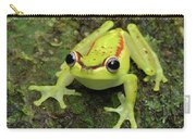 Tree Frog Hyla Rubracyla, Colombia Carry-all Pouch