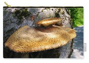 Tree Fungus 1 Carry-all Pouch