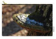 Tree Shelf Snow Sprinkled Fungus Carry-all Pouch