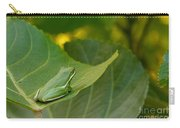 Treefrog Resting Carry-all Pouch
