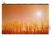 Trees With Sunlight Carry-all Pouch