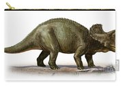 Triceratops Prorsus, A Prehistoric Era Carry-all Pouch