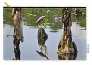 Tricolored Reflection Carry-all Pouch