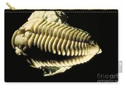 Trilobite Fossil Carry-all Pouch