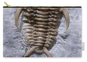 Trilobite Carry-all Pouch