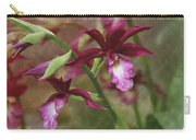 Tropical Beauty Carry-all Pouch by Debra and Dave Vanderlaan