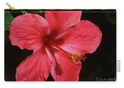 Tropical Beauty Of Florida Carry-all Pouch