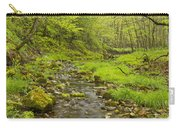 Trout Run Creek 3 Carry-all Pouch