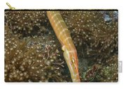 Trumpet Fish, Lembeh Strait, Bitung Carry-all Pouch