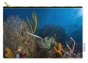 Trumpetfish, Belize Carry-all Pouch