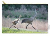 Trying To Keep Up Carry-all Pouch by Carol Groenen