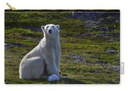 Tundra Bear Carry-all Pouch
