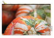 Turban Squash Carry-all Pouch