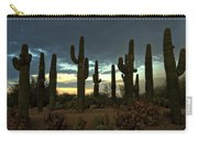 Turquoise Skies  Carry-all Pouch