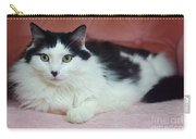 Tuxy In Repose Carry-all Pouch