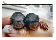 Twin Baby Squirrels Carry-all Pouch
