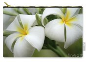 Twin Plumeria Flowers Carry-all Pouch