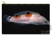 Twin Spot Wrasse Carry-all Pouch