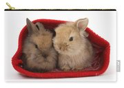 Two Baby Lionhead-cross Rabbits Carry-all Pouch