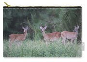 Two In Velvet Carry-all Pouch