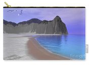 Two Seagulls Fly Over A Beautiful Ocean Carry-all Pouch by Corey Ford