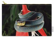 Two-striped Forest Pit Viper Bothrops Carry-all Pouch