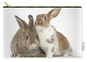 Two Young Rabbits Carry-all Pouch