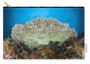 Underside Of A Table Coral, Papua New Carry-all Pouch by Steve Jones