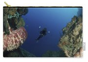Underwater Photographer At The Entrance Carry-all Pouch