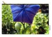Up Up And Away Carry-all Pouch
