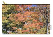 Upj Campus Autumn  Carry-all Pouch