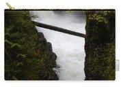 Upper Qualicum Falls 2 Carry-all Pouch