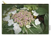Variegated Lace Cap Hydrangea - Pink And White Carry-all Pouch