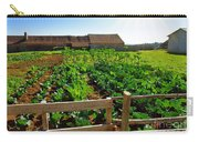 Vegetable Farm Carry-all Pouch by Carlos Caetano
