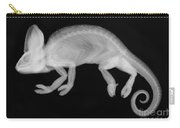 Veiled Chameleon X-ray Carry-all Pouch by Ted Kinsman